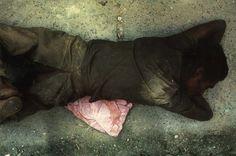 Miguel Rio Branco. Man Dog, Maciel. 1979. Collection of Leticia and Stanislas Poniatowski. Urbes Mutantes