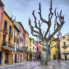 Collioure et Aix-en-Provence, deux villes du sud érigées en véritables muses par de grands maîtres de la peinture. Suivez le guide pour découvrir des sites de mémoire en Provence et dans le Roussillon.