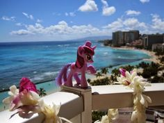 Ponies Around the World 2014