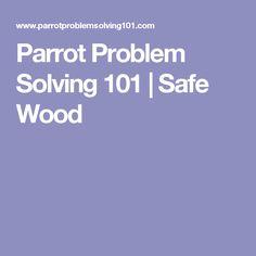 Parrot Problem Solving 101 | Safe Wood