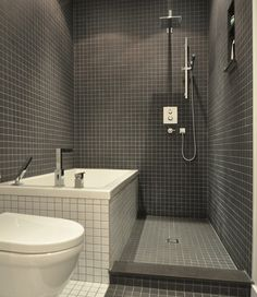 Interesting way to separate shower and bath in a small ...