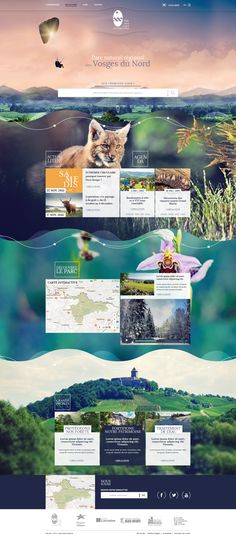By Hypaepa.com Webdesign Inspiration Layout Animal Moutain Nature                                                                                                                                                                                 More