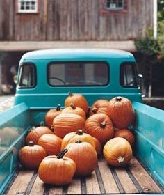 pumpkins in a blue truck by melisa