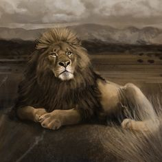 The Barbary Lion was driven to extinction in the 1950s by, you guessed it, people. Again why?