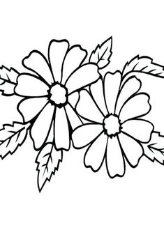 Marigold Coloring Pages  for Kids