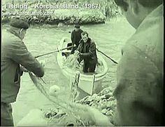 An archive footage of local fisherman from village of Žrnovo fishing around Gostinja Vala - Defora - Korcula island, Croatia Archive Video, Archive Footage, Video Footage, Fishing, Boat, Vintage, Dinghy, Boats, Vintage Comics