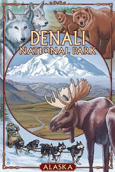 Denali National Park, Alaska Views (9x12 Art Print, Wall Decor Travel Poster)