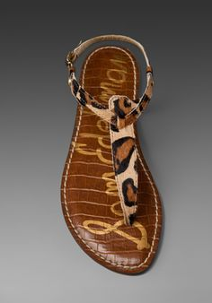 Sam Edelman Gigi sandal in leopard.  Leopard print sandals are on my wish list right now.