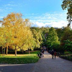 #london #stjames #park #landscape #autumn