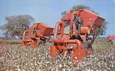 old+cotton+pickers | Old Farmall Cotton Pickers At Work