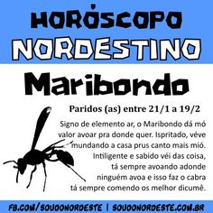 Horóscopo Nordestino – Sou do Nordeste Music Promotion, Introvert, Music Lovers, Music Is Life, Funny Quotes, Hilarious, Lol, Stress, Songs