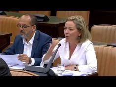 Rescate plan de empleo de Canarias en PNL Grupo Mixto Congreso Diputados