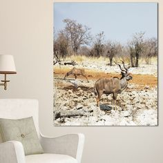 DESIGN ART Designart 'Two Smart Wildebeests in Jungle' Landscape Artwork Canvas