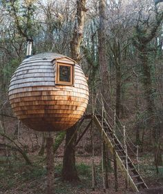 Would you consider this a Tree House? #treehousemovement ❤️ or ? #treehouse #treehouses #nature : @buxtonc