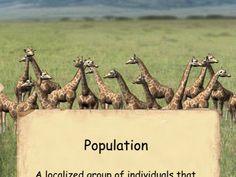 Population Genetics and Evolution - Vimeo