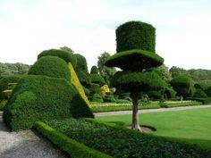 Сад Левенс Холл.