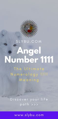 Angel Number 1111 - The Ultimate Numerology 1111 Meaning 1111 Numerology, Numerology Birth Date, Numerology Numbers, Numerology Chart, Angel Number 11, Angel Number Meanings, Keep Seeing 1111, Number 1111, Universe Love
