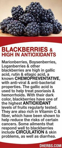 Blackberries are high in gallic acid, rutin & ellagic acid, a known chemopreventative, with anti-viral & anti-bacterial properties. The gallic acid is used to help treat psoriasis & hemorrhoids. Blackberries have one of the highest antioxidant levels of f Natural Medicine, Herbal Medicine, Healthy Tips, Healthy Choices, Healthy Food, Health And Nutrition, Health And Wellness, Health Vitamins, Fruit Benefits