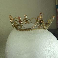 Queen bee of the hive. Ballet dancers dream