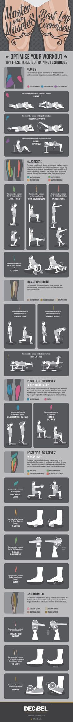 Best Leg Exercises Infographic