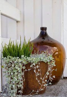 amber glass bottle and rust Blue Garden, Summer Garden, Winter Garden, Garden Art, Autumn Inspiration, Garden Inspiration, Container Plants, Container Gardening, Growing Gardens