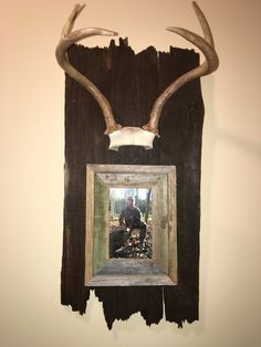Deer Antler Mount Craft