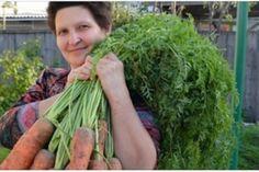 O picătură de iod și nu-ți vei recunoaște grădina! Acesta este un remediu împotriva fitoftorozei, mucegaiului alb și dăunătorilor. - Fasingur Celery, Asparagus, Carrots, Vegetables, Food, Gardening, Plants, Studs, Essen