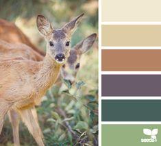 Color Deer - http://design-seeds.com/index.php/home/entry/color-deer1