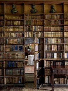 Library room with a secret door by antonia