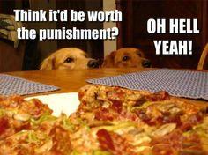 That's my puppy!