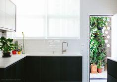 Uma cozinha toda em branco em preto ganhou vida com os vasinhos de plantas que se espalham pelas bancadas.