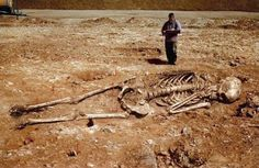 Did Scientists Really Find Giant Human Skeletons in Greece?: Giant Skeletons Found in Greece? Giant Skeletons Found, Islam And Science, Before The Flood, Unexplained Mysteries, Human Skeleton, Greece, Mystery, Lion Sculpture, Bible