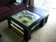41 Stunning Aquarium Feature On Coffee Table Design Ideas . The hobby of keeping and maintaining an aquarium has become very popular as it takes very little space and this hobby can be maintained by all individ. Coffee Table Design, Diy Coffee Table, Diy Table, Diy Aquarium, Aquarium Design, Fish Tank Table, Fish Tank Coffee Table, Coffee Table Aquarium, Terrarium Table
