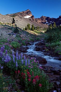 Three Sisters Wilderness, Oregon; first place I visited by myself in Oregon...magical