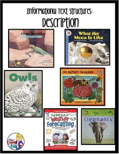 TEXTS TO USE: DESCRIPTIVE TEXTS (R) (W) Mentor texts for informational text structures; Lots of tips too, to help you teach informational text structures in your classroom. Reading Strategies, Reading Skills, Literacy Strategies, Comprehension Strategies, Writing Resources, Reading Comprehension, 3rd Grade Reading, Guided Reading, Shared Reading