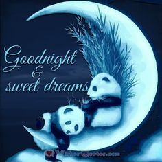 Good night sister and yours, sweet dreams 😴💙❤👍 Good Night Family, Good Night For Him, Good Night Sister, Good Night Love Quotes, Good Night Prayer, Cute Good Night, Good Night Friends, Good Night Blessings, Good Night Gif