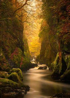 coiour-my-world: Fairy Glen Gorge River Conwy Craig McCormick
