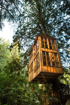 Treehouse Point, a treehouse bed and breakfast owned by Pet and Judy Nelson in Issaquah, WA. Photos by Adam Crowley.