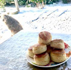 Egyszerű krumplis pogácsa   Fűszer és Lélek Hamburger, Bread, Food, Brot, Essen, Baking, Burgers, Meals, Breads