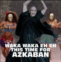 50 Harry Potter memes and more Shakira - Voldemort Harry Potter World, Memes Do Harry Potter, Images Harry Potter, Harry Potter Funny Pictures, Fans D'harry Potter, Mundo Harry Potter, Harry Potter Cast, Potter Facts, Harry Potter Fandom