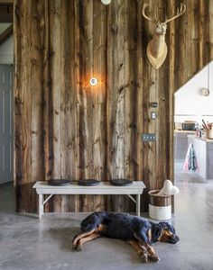 Dog friendly concrete floor in Kimberly Peck converted barn
