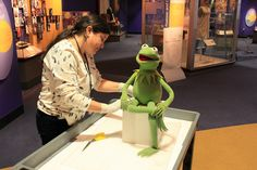 """Our collections manager adds protective mylar between Kermit's fabric and his pedestal. He is moving from a case in a section of """"American Stories"""" to the front case while the Ruby Slippers are on loan to the Victoria and Albert Museum."""