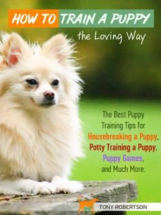 Best Way To Potty Train A Puppy Like A Pro How to Train a Puppy the Loving Way - The Best Puppy Training Tips for Housebreaking a Puppy, Potty Training a Puppy, Puppy Games, and Much More by Tony Robe Puppy Potty Training Tips, Training Your Dog, Best Puppies, Best Dogs, House Breaking A Puppy, Dog Minding, Puppy House, Dog Training Techniques, Dog Barking