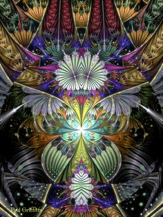 Untitled fractal art / Paul Griffitts / JWildfire / www.frackxion.com