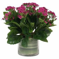 "Add a touch of nature-inspired elegance to your decor with this lovely faux floral arrangement, showcasing silk kalanchoe blooms in a glass vase. Product: Faux floral arrangementConstruction Material: Silk, plastic and glassColor: Purple and greenDimensions: 12.5"" H x 13.5"" DiameterCleaning and Care: For indoor use only"