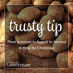 Quick tip on growing #potatoes to get in for the #christmas #harvest