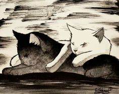 Black and White by Raphael Vavasseur