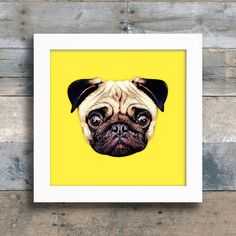 Quadro Pug Colors - Yellow - Encadreé Posters