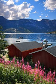 Norway fjord mountains red wooden houses and by behindmyblueeyes, $4.00
