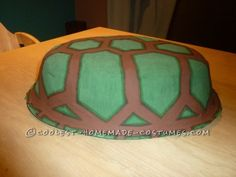 Turtle shell ready!